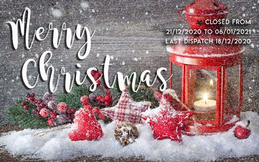 christmas-holidays-and-charity